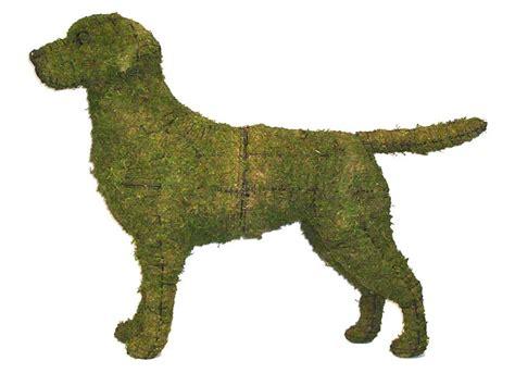 labrador retriever garden topiary frame