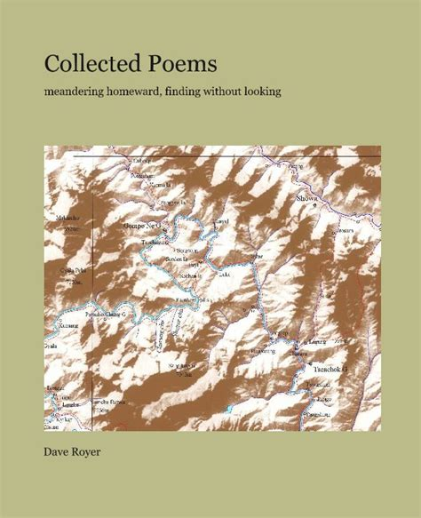 collected poems books collected poems by dave royer poetry blurb books uk