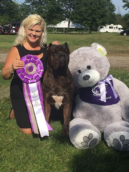 lorain county kennel lorain county kennel club sunday august 13 2017 canine chronicle