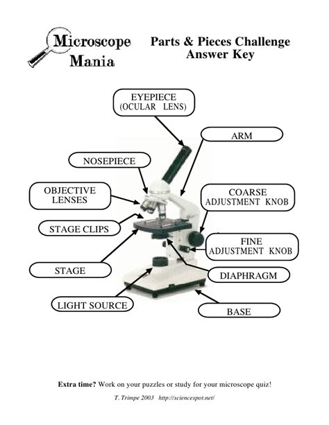 Parts Of A Microscope Worksheet Answers by Microscope Mania Micro Review Act