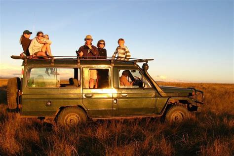 best safaris for families 9 days best tanzania family safari tanzania lodge safari