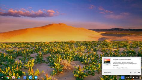 How to get beautiful new wallpapers on your Chromebook