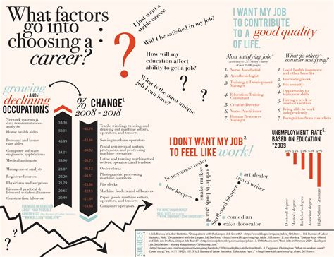 Career The Infographics Career Infographic Template