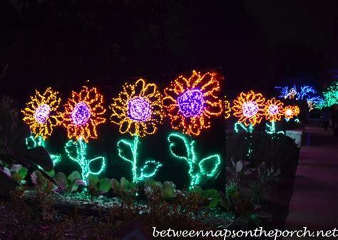 atlanta botanical gardens christmas garden lights