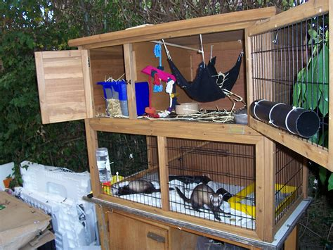 Ferret Hutch Plans any plans on building a ferret hutch ferret ferreting discussion the