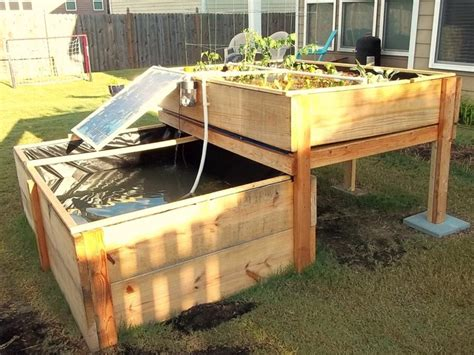 design for aquaponic backyard aquaponic system