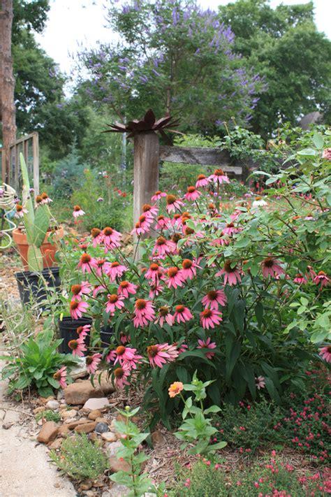 garden plants houston texas pdf
