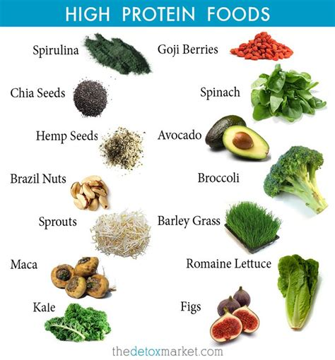 6 vegetables with the most protein top high protein foods high protein foods