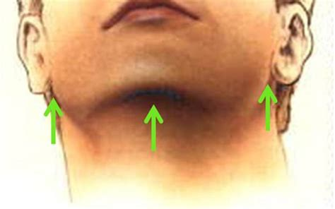 Below The Chine | neck shaping contouring seattle bellevue