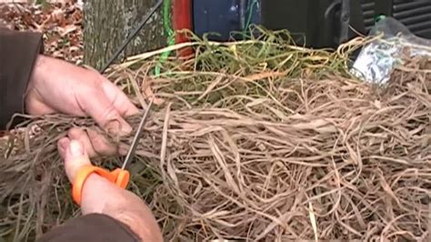 best hunting layout blinds hunting blinds how to brush out your layout blind youtube