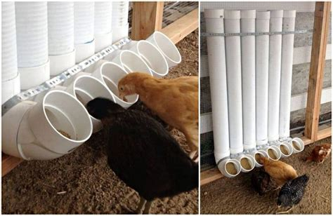 self feeder chicken self feeders home organization ideas