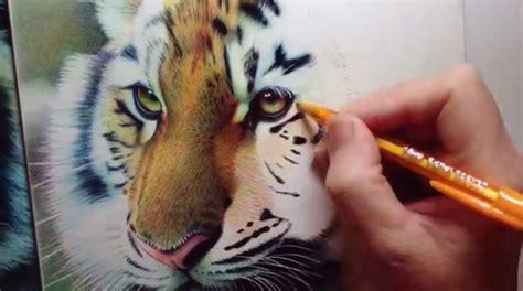 dibujos realistas con colores 6 dibujos super realistas hechos s 243 lo con bol 237 grafo pen