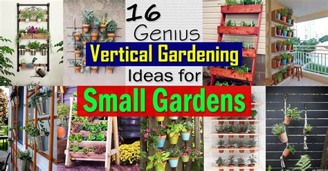 genius vertical gardening ideas  small gardens