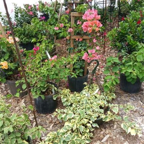 time pottery winter garden fl clay garden pottery nurseries gardening 4808 e