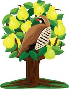 The 12 days of job searching and a partridge in a pear tree