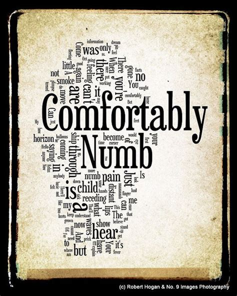 lyrics to comfortably numb by pink floyd comfortably numb quotes quotesgram