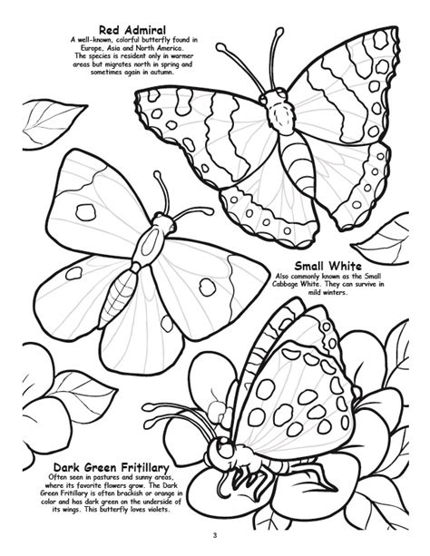 coloring pages of birds and butterflies coloring books butterfly s birds bugs coloring books