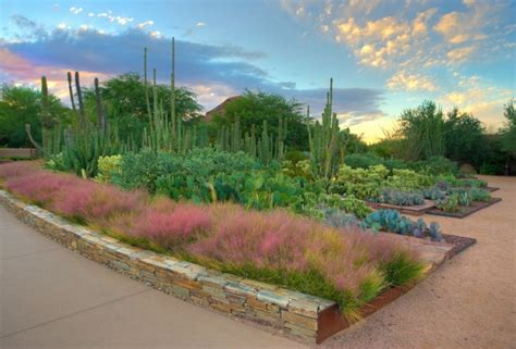 Desert Botanical Garden Az by Visit The Desert Botanical Garden Top Places To See In