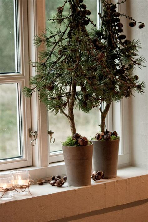 trees winter christmas and window sill on pinterest