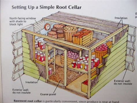 Backyard Shed Blueprints by Make Your Harvest Last Longer By Building A Root Cellar