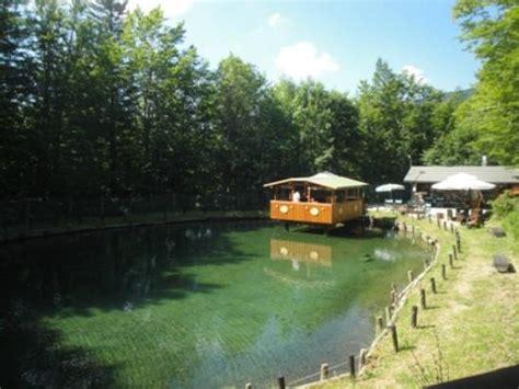 ristorante lago giardino pistoia laghetto verde foto di lago verde abetone tripadvisor
