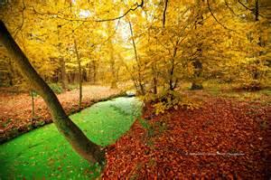 automne photo paysage le