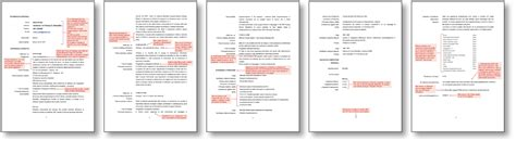 Resume Definition Wordreference Thematic Resume Definition Worksheet Printables Site