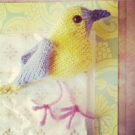 parrot knitting pattern free more birds to knit free patterns grandmother s pattern