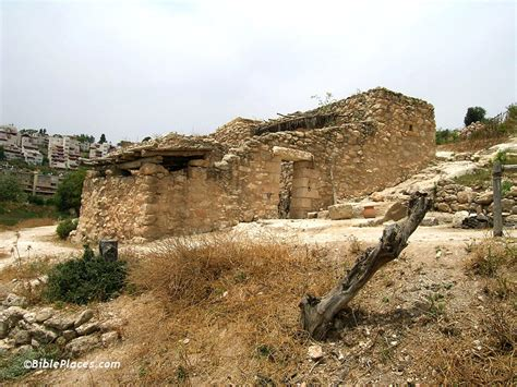 january 2006 newsletter and free photos bibleplaces