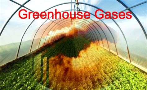 green house gasses what are greenhouse gases what do they do