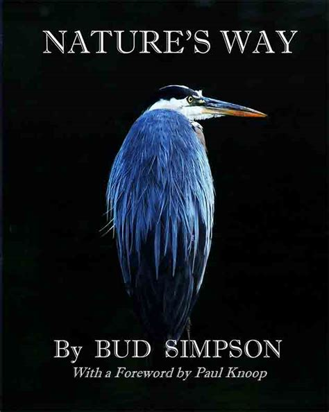 from viral to virile books nature s way the great blue heron by bud biblio