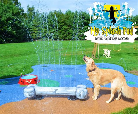 splash dogs bowl portable water play features for your splash pad