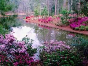 Z Line Computer Desk Fotos De Primavera Paisajes Y Naturaleza Flores Campos