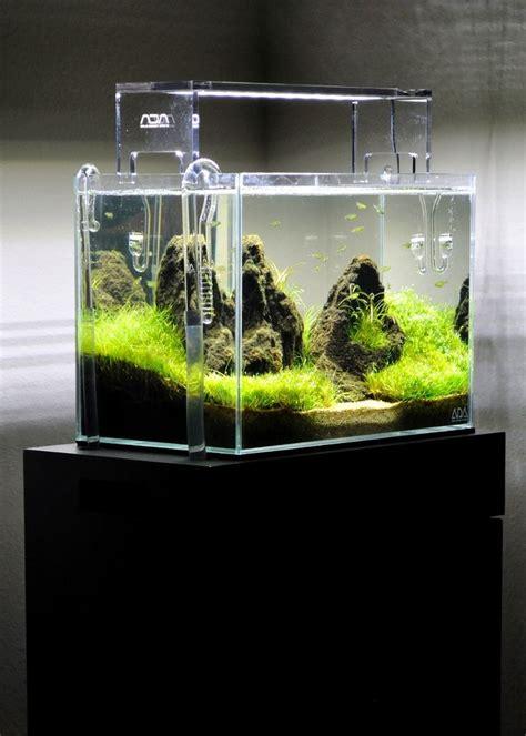 micro aquarium aquarium nature aquarium nano aquarium