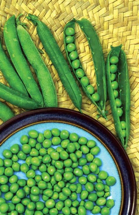 types of garden peas consider heirloom varieties when growing peas farm and