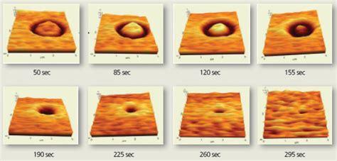 xr7 capacitor esr scanning capacitance microscopy scm 28 images scanning capacitance microscopy scm scanning