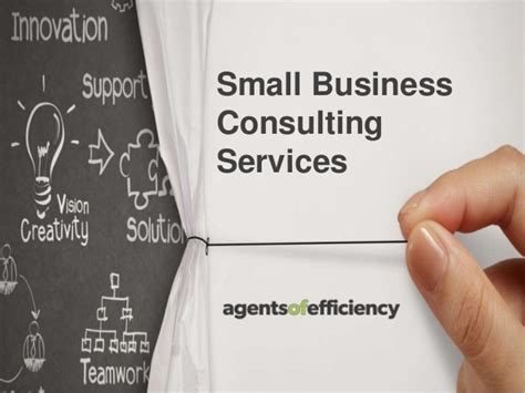 Small Business Efficiency Act small business consulting services agents of efficiency