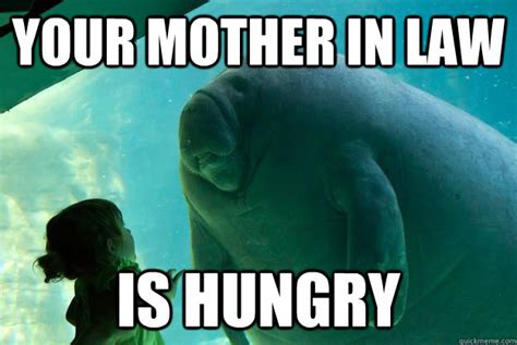In Law Meme - crazy mother in law meme bing images