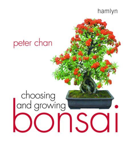 the bonsai beginner s bible octopus bible series books choosing and growing bonsai dealtrend