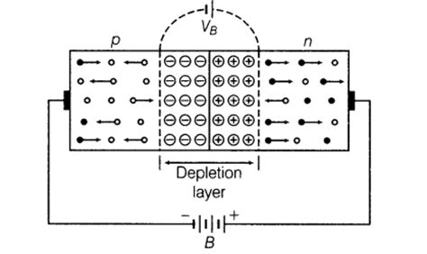 types of diodes explained important questions for cbse class 12 physics semiconductor diode and its applications