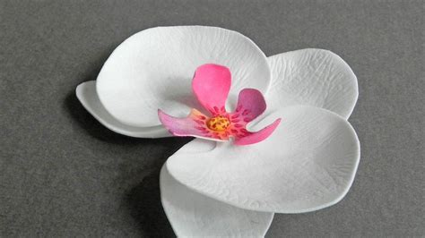 paper orchid flower pattern how to make pretty foam paper orchids diy crafts