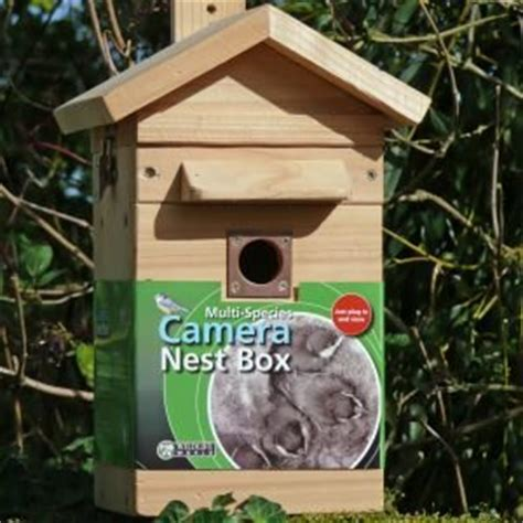 cedar bird nest box feeder with colour night vision