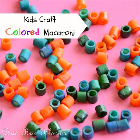 macaroni crafts for craft colored macaroni brie brie blooms