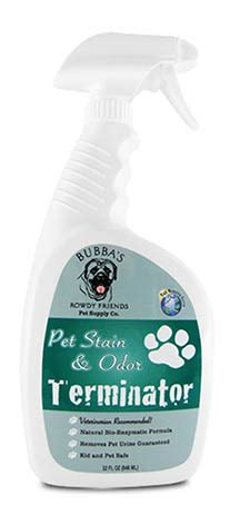 couch stain remover products removing pet stains off carpet