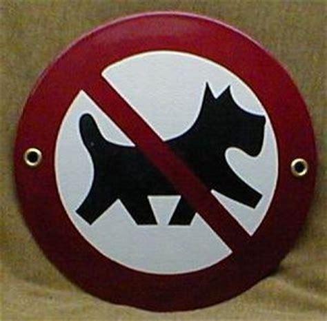 divieto d ingresso ai cani la crisi apre le porte ai cani i negozi tolgono il divieto