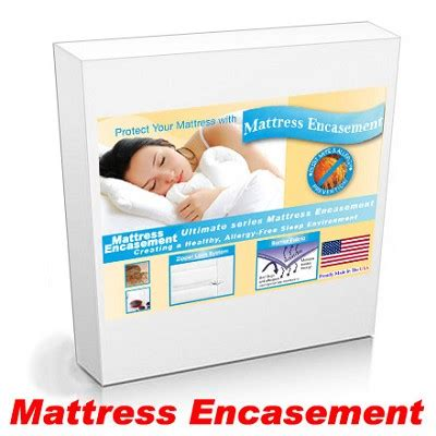sofa bed mattress protector sleeper sofa bed size allergy mattress protector