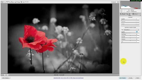 tutorial photoshop cs5 bianco e nero photoshop bianco e nero parziale effetto splash facile