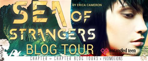 sea of strangers books tour review sea of strangers by erica cameron ya
