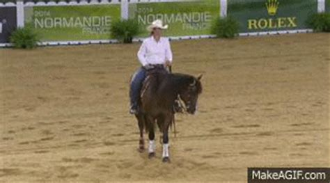 african pattern gif 10 weg reining moments that give me the warm fuzzies