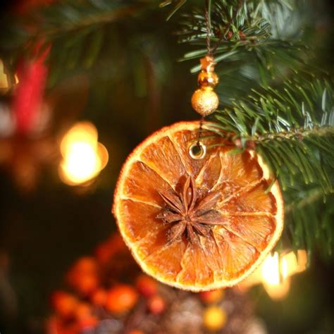 dried orange slice ornaments crafty pinterest